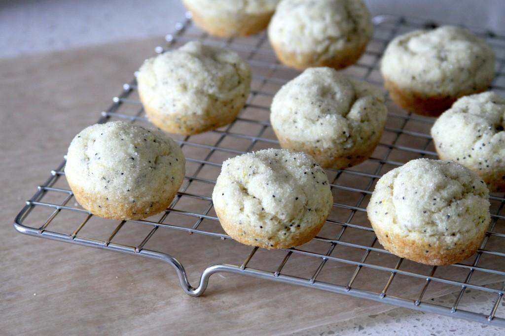 Easy Donut Recipe: Lemon Poppy Seed Donut Bites